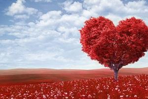 Без свята проживемо, а без любові – не зможемо