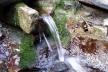 З якого джерела Тернопільського району вода найбезпечніша?