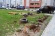 У Тернополі з'явилися вандали-собаки