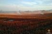Біля Тернополя згоріло 3 тонни соломи