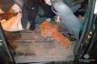 На Кременеччині злодії із Закарпаття крали автозапчастини