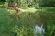 Село на Тернопільщині, яке минають стихії, стало одним з найнеймовірніших в Україні
