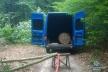 На Шумщині затримали жителів Рівненщини, які незаконно рубали ліс