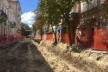 У Тернополі під час реконструкції вулиці Чорновола висадять 30 нових дерев