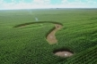 Що станеться якщо Україна не прийме закон про ринок землі