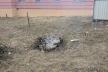У Тернополі оштрафували чоловіка, який спалював суху траву
