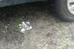 На трасі неподалік Збаража невідомі порозставляли шипи (Фото)