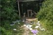 Національний заповідник Тернопільщини засмітили відпочивальники