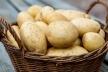 Вартість картоплі зросла до 16,6 грн за кг