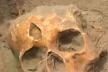 У Лановецькому районі на городі знайшли людські рештки