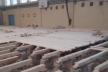 У Ланівцях під час ремонту у шкільному спортзалі виявили грибок на підлозі
