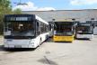 Все що треба знати про нову транспортну мережу Тернополя