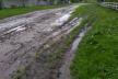 Жахливий стан доріг в Борсуківській громаді на Тернопільщині: машини застрягають в болоті (Фото)