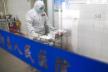 На заводі у Бережанах — спалах коронавірусу