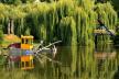 У Тернополі почали реалізацію комплексної програми очистки ставу