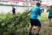 Цинізму немає меж: У Тернополі політики вирубали зелені насадження заради свого піару