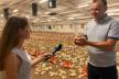 Відповідальний бізнес: на Зборівщині розвивають еко-птахоферму