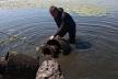 Водолази затампували труби на набережній Тернопільського ставу