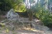 «Трон природи»: на Тернопільщині створили унікальну локацію