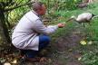Доля молодого лелеки в Теребовлянськім краї, що на Тернопільщині