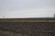 Директор однієї зі шкіл Тернопільщини незаконно здав в оренду понад 80 га землі