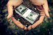 Вже влітку на Тернопільщині гектар землі вартуватиме менше тисячі євро