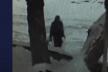 У Тернополі розшукують злочинця, який пошкодив аераційний фонтан (Відео)