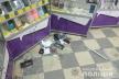 На Тернопільщині з магазину вкрали 9 смартфонів