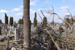 Скандал на кладовищі: хто прибиратиме наслідки обрізання дерев (Відео)