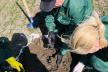 На Тернопільщині досліджують ґрунт на наявність шкідників
