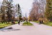 Тернополян закликають взяти учать у загальноміській толоці
