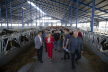 """У """"Бучачагрохлібпром"""" приїхали повчитися понад дві сотні молочників з усієї України"""