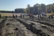«Зелена країна»: на Тернопільщині висадили майже 15 тис. дерев