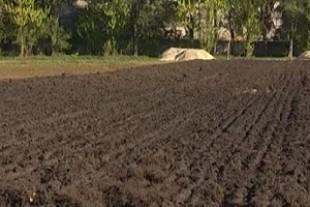 Територіальній громаді на Тернопільщині повернуто земельні ділянки вартістю понад 160 тис грн