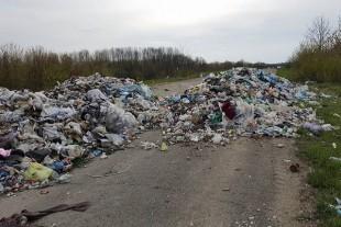 На Теребовлянщині уже вивозять сміття, що майже рік гнило посеред дороги (Фото)