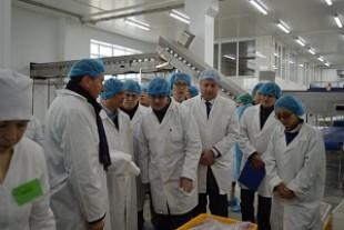 Китайці хочуть харчуватися яловичиною із Тернопільщини (Фото)
