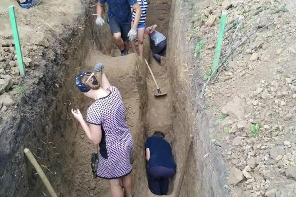 Що відкопали студенти поблизу Вишнівецького палацу?