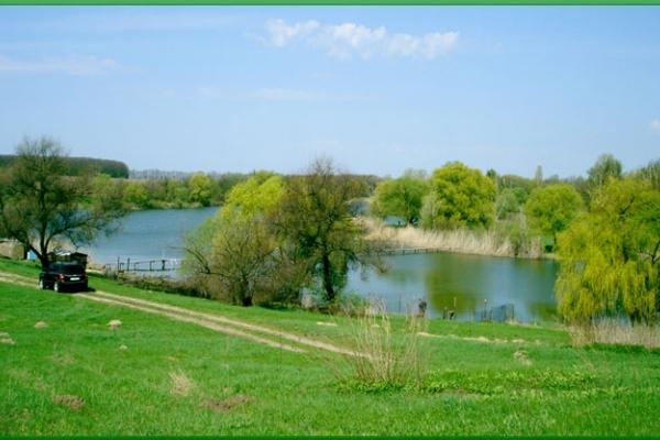 Аграрна Тернопільщина: Технології і оптимізація весни