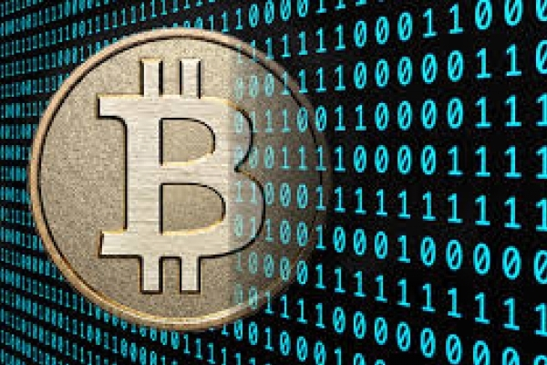 В інституті Патона у Києві виявили 200 комп'ютерів для генерування Bitcoin