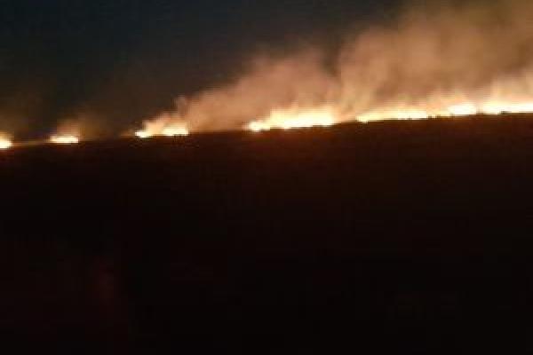 Бучаччина на межі екологічної катастрофи: кілька днів на полях депутат облради палить солому (Відео)