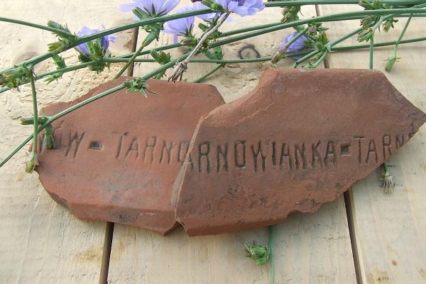 Tarnovianka... або як дахівка вироблена у селі Устя нагадала про забуті сторінки минулого