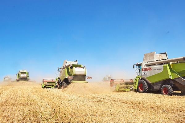 Агрохолдинг «МРІЯ» завершив збір ранніх зернових