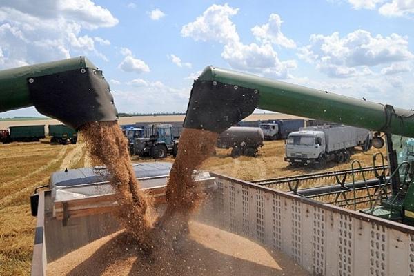 На Тернопільщині на складах Держрезерву переважують зерно