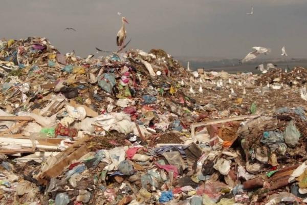 Поблизу Тернополя з'явиться сучасний сміттєсортувальний комплекс