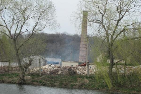 Екологічна катастрофа? Поблизу Тернополя під відкритим небом розкладається 5000 тонн останків тварин