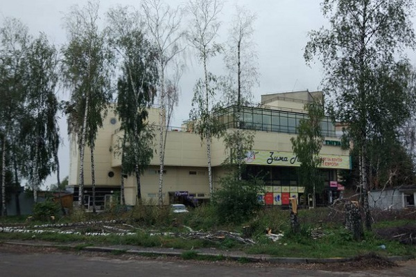 Для чого у Тернополі зрубали дерева?