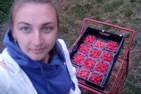 Студентка з Тернопільщини розповіла правду про заробітки в Німеччині (Фото)