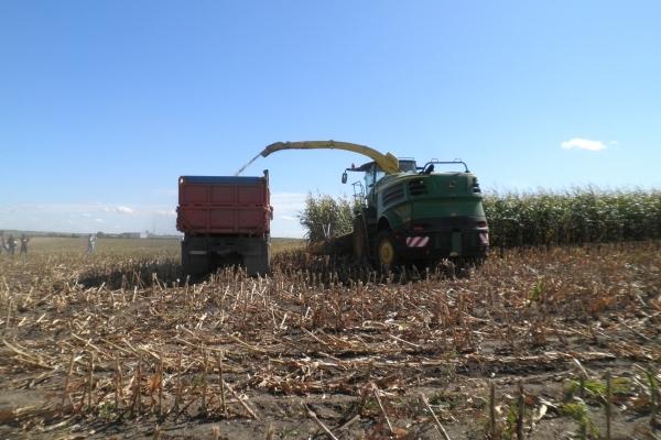 Аграрна Тернопільщина: такий обнадійливий жовтень (Фото)