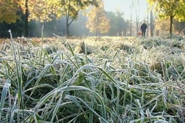 На Тернопільщині передають до дев'яти градусів морозу
