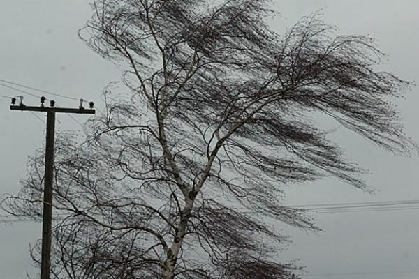Сьогодні, 26 березня, на Тернопільщині очікують сильний вітер та ожеледицю